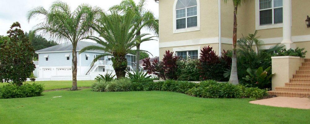Use Our Service And Get the Best Lawn
